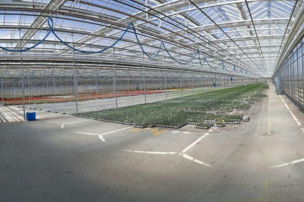 Panorama Shot of New Range